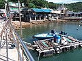 HK 西貢 Sai Kung 清水灣半島 Clear Water Bay Peninsula 布袋澳 Po Toi O Piers n boats August 2018 SSG 13.jpg