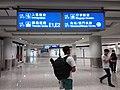 HK 赤鱲角 Chek Lap Kok 香港國際機場 Hong Kong Int'l Airport Terminal T1 August 2019 SSG 07.jpg