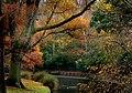 Hagley Park Christchurch NZ (9280393921).jpg