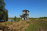 Hahnenmoor Beobachtungsturm 01.JPG
