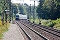 Halte Fontainebleau - Forêt IMG 8558.jpg