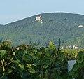 Hambacher Schloss - panoramio.jpg