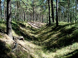 Battle of Hanko (1941) - Remains of dugouts in the forest on the Hanko peninsula, just east of the town of Hanko.