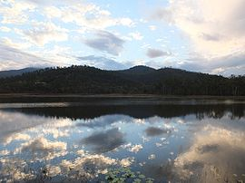Hasties Swamp National Park.jpg