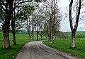 Herzstück des Biosphärengebiets der schwäbischen Alb, Der ehemalige Truppenübungsplatz Münsingen im sogenannten Münsinger Hardt, Weg 1 - panoramio (2).jpg