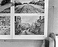 Het plaatsje Verdun (verwoest), Bestanddeelnr 917-6181.jpg