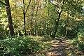 Hilden - Hildener Heide - Jaberg 03 ies.jpg