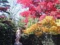 Hillwood Gardens in November (15364239024).jpg