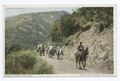 Hitting the Trail, Arrowhead Springs, Calif (NYPL b12647398-74137).tiff