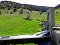 Hocanın suyu mart 2011 - panoramio.jpg