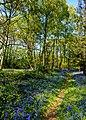 Hodsock Priory, Near Blythe, Notts (26).jpg