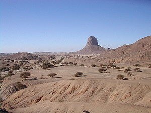West Saharan montane xeric woodlands - Ahaggar National Park in Algeria