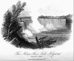 Homes of the New World - Horse-Shoe Fall, Niagara.jpg