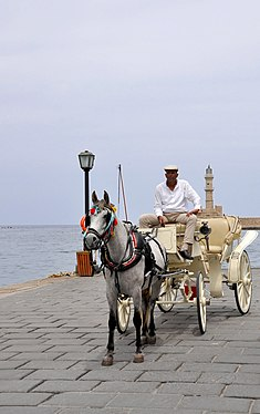 Horse-drawn carts in Chania, Creete 001.jpg