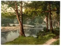 Horseshoe Falls, Berwyn Valley, Llangollen, Wales-LCCN2001703518.tif