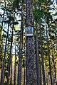 Hory obrázek sv. Filipa na stromě.jpg