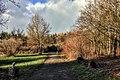 Hostivařský park - panoramio.jpg