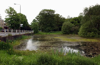 Wimbledon Common, 7 Post Pond