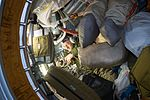 ISS-50 Andrei Borisenko gathers equipment inside the Russian segment.jpg