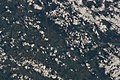 ISS040-E-16865 - View of Germany.jpg