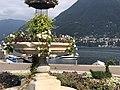 I cigni della fontana di Cernobbio.jpg