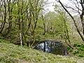 Ibarakawacho, Higashiomi, Shiga Prefecture 527-0216, Japan - panoramio (5).jpg
