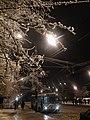 Ice storm in Moscow, Vykhino (Ледяной дождь в Москве, Выхино) (5499268195).jpg