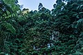 Ilha de São Miguel DSC01822 (36843977881).jpg