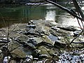 Illergrund - panoramio.jpg