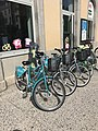Image de Bourg-en-Bresse en mai 2018 - 2.JPG