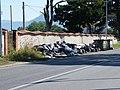 Immondizia Via S. Felice Circeo - panoramio - Qu.jpg