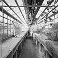 Interieur van de lage eerste kas - Utrecht - 20406105 - RCE.jpg