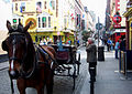 Ireland - Dublin - Temple Bar - Horse Carrage and Owner (4887826860).jpg