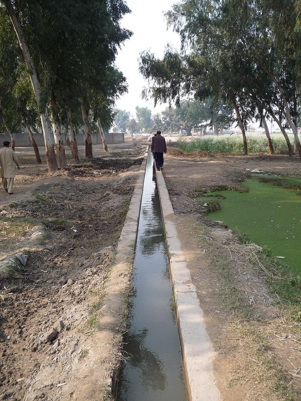 Irrigation Faisalabad, Pakistan (PSSP)