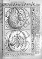 Jacopo Berengarius da Carpi, Isagoge breves Wellcome L0031349.jpg
