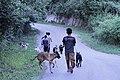 Jalan-jalan sore pemburu.jpg