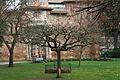 Jardin des plantes de Toulouse en hiver 04.JPG