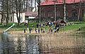 Jezioro Mlyńskie (Maszewskie).jpeg