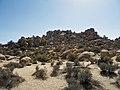 Joshua Tree Nationalpark Hidden Valley Nature Trail P4140411.jpg