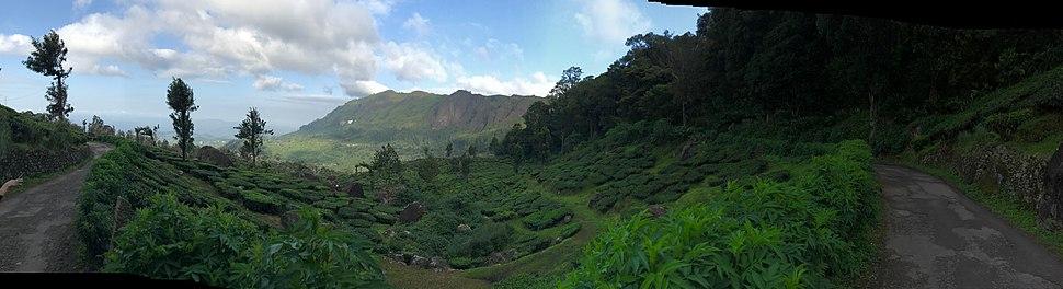 Планински пътища в Керала