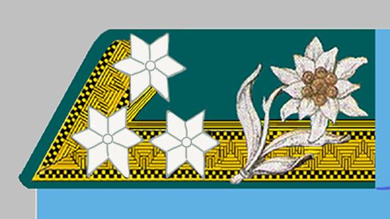 Kadett k.k. Gebirgstruppe 1914-18