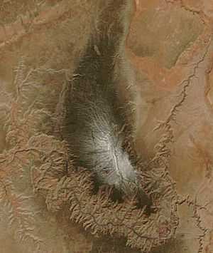 Kaibab Plateau - Kaibab Plateau from space