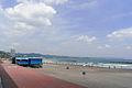 Kamogawa beach 鴨川の海岸 (2683112372).jpg