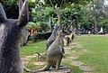 Kangaroos, Haw Par Villa (14790767281).jpg