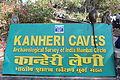 Kanheri Caves (8).JPG