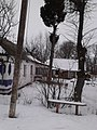 Kapustyntsi, Kyivs'ka oblast, Ukraine, 09340 - panoramio (2).jpg