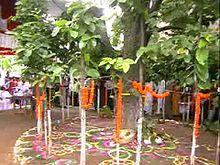 Karam (festival) - Wikipedia