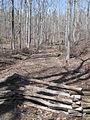 Kings Mountain National Military Park - South Carolina (8558877134) (2).jpg