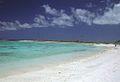 Kiritimati AKK Lagoon Shore.jpg