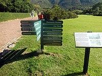 Kirstenbosch National Botanical Garden by ArmAg (5).jpg
